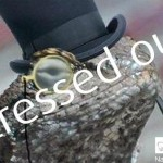 NCA website falls foul of Lizard Squad DDoS attack