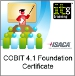 COBIT 4.1 Foundation Course (Official ISACA 2-day Course)