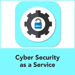 Cyber Security as a Service