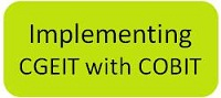 Implementing Governance of Enterprise IT Using COBIT