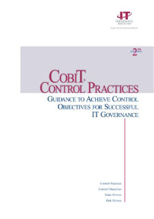 COBIT Control Practices