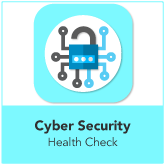 Cyber Security Health Check Consultancy