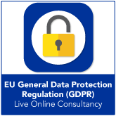 Live Online GDPR Consultancy