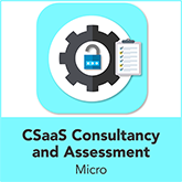 Cyber Security as a Service Consultancy and Assessment - Micro