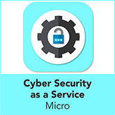 Cyber Security as a Service for Micro Organisations