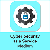 Cyber Security as a Service for Medium Organisations
