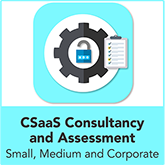 Cyber Security as a Service Consultancy and Assessment - Small